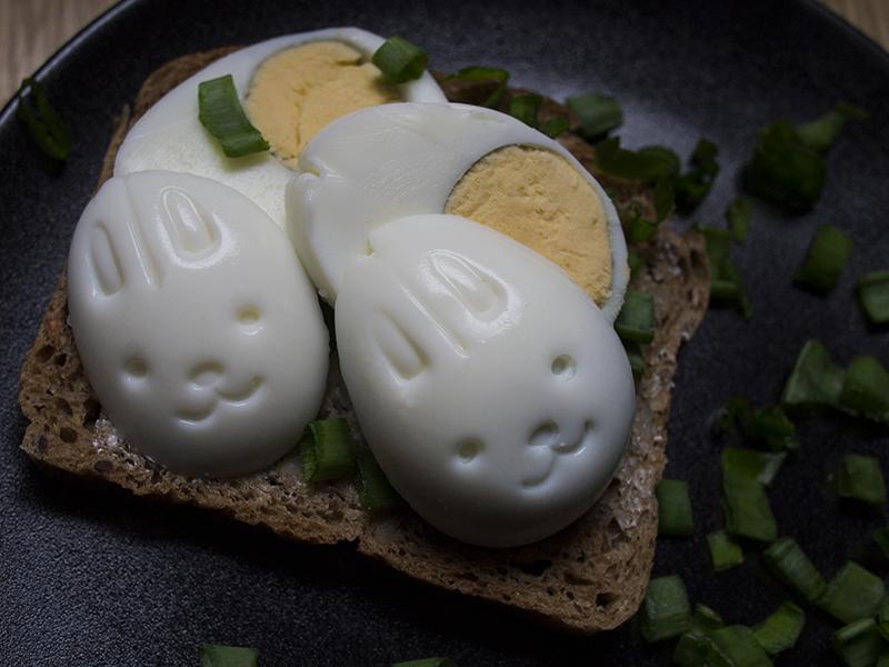 królicze jaja